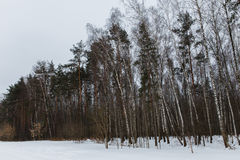 Photo of picturesque winter landscape Royalty Free Stock Images