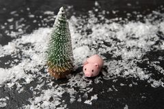 Photo of pig , artificial Christmas tree, snow stock photo