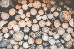 Photo of a Pile of Logs stock image