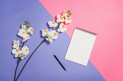 Photo plate de configuration d'un bureau créatif d'espace de travail de femme d'indépendant avec le fond de l'espace de copie Photographie stock