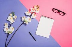 Photo plate de configuration d'un bureau créatif d'espace de travail de femme d'indépendant avec le fond de l'espace de copie Photo libre de droits