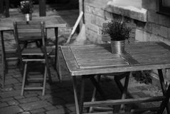 Photo of Potted Flower on Folding Table stock images
