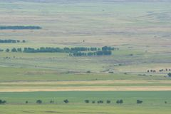 Photo prise d'une taille Zone verte avec des arbres nature image stock