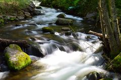 Little Creek Rapids. Photo of rapids and rocks along a little creek in the state of Oregon Royalty Free Stock Image
