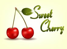 Photo realistic delicious cherry Stock Images