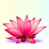 Photo-realistic lotusbloembloem royalty-vrije illustratie