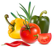 Photo-realistic . Vegetables. Peppers and tomato Royalty Free Stock Image