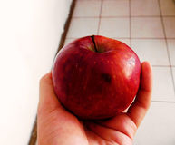 A red apple on a hand Royalty Free Stock Photo