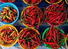 Photo of red chili pepper Royalty Free Stock Photography