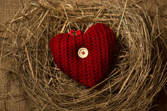 Photo of red knitted heart lying in birds nest Royalty Free Stock Photography
