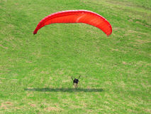 Photo red paraglider. Paragliding, safety, sport,Aerial Sports Royalty Free Stock Photo