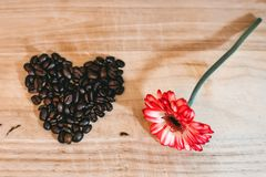 Photo of Red Petaled Flower Near Coffee Beans Royalty Free Stock Images