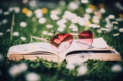 Photo of Red Sunglasses With Gold Frame on Book Surrounded by White Flowers Stock Photos