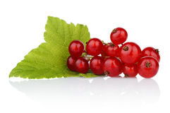 Photo of redcurrant with leaf isolated on white Royalty Free Stock Image