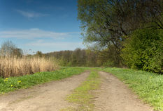 Photo of the road through the meadow in the searly pring in Apri Royalty Free Stock Images