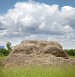 Photo of rolls of hay in the field Stock Photos
