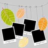 Photo on a rope on autumn background Royalty Free Stock Photography