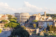Photo of ruins of the colosseum, roman forum Stock Photos