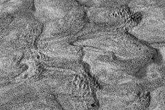 Photo of sandy river bottom Stock Image