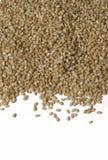 Photo of Sesame Seeds Stock Photos