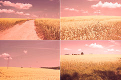 Photo set with landscapes Royalty Free Stock Photo