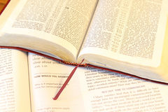 The Bible Royalty Free Stock Images