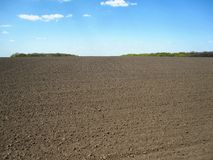 Landscape. Background field, black soil, sky and trees. This photo shows the landscape. Background field, black soil, sky and trees stock photo