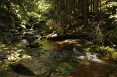 Mountain stream. Royalty Free Stock Photography