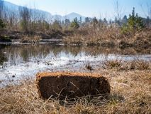 Turf cutting. Photo shows a pile of turf in front of a moor with water and grassland Royalty Free Stock Images