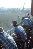 1976. Australia. N.T. Darwin.  Rodeo. The Photo shows some  `Stockmen`  Australian cowbys avaiting their turn på participate in the rodeo, riding on a wild and Stock Photos