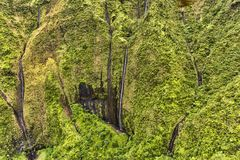 Weeping Rock  at Kauai Hawaii Royalty Free Stock Photos