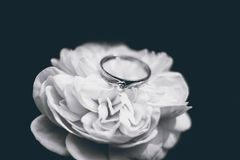 Photo of Silver Ring stock images