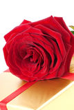 Photo of single red rose and gift Royalty Free Stock Photo