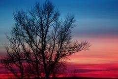Photo of sky at sunset Stock Photos