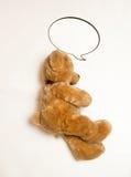 photo of sleeping cute brown teddy bear Stock Photos