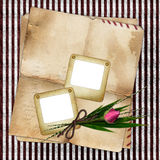 Photo slides with old paper and bouquet Stock Photo