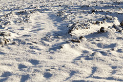 Photo snow, close-up Royalty Free Stock Photography