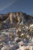 Photo a snow covered mountain with trees in Zion Royalty Free Stock Image