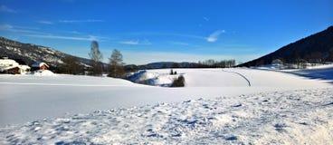 Photo of Snow Near Tress Stock Photo