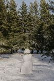 Photo of snowman in the forest stock images