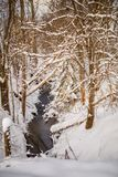 Photo of snowy landscape and river. On winter day Stock Photography