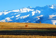 Photo snowy mountain range in the early morning. royalty free stock photo