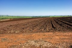 Soil soon after the peanut harvest on a sunny day in Sao Paulo, Brazil. Photo of Soil soon after the peanut harvest on a sunny day in Sao Paulo, Brazil royalty free stock photo