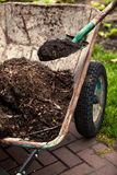 Photo of spade putting soil in old wheelbarrow Stock Images