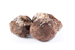 Photo spoiled potatoes. Bad products Stock Photography