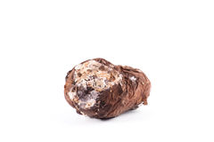 Photo spoiled potatoes. Bad products Stock Photos