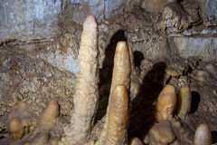 Photo of stalagmites in the cave. Artificial lighting Stock Images