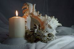 Photo still life, shells and candle stock photo