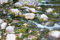 Photo stones with moss in the water Royalty Free Stock Images