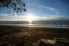 Photo of a sunrise above the sea on empty pebble sand beach with a tree branch on a foreground Stock Image